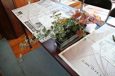 トピアリー植物