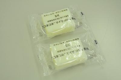 ykj_kengaku1207_10.jpg