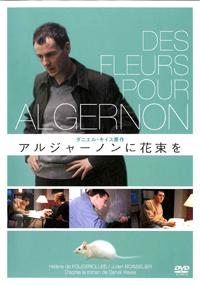 algernon_small.jpg