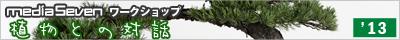 bonsai_1305_bn.png