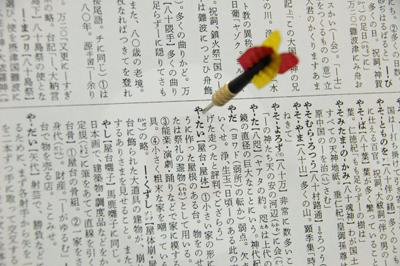 p27_img_04.JPG